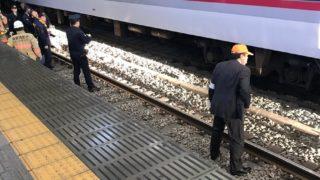 ひばりが丘駅で人身事故。現場の様子(画像)と声「相当がっつり逝った系かな…」