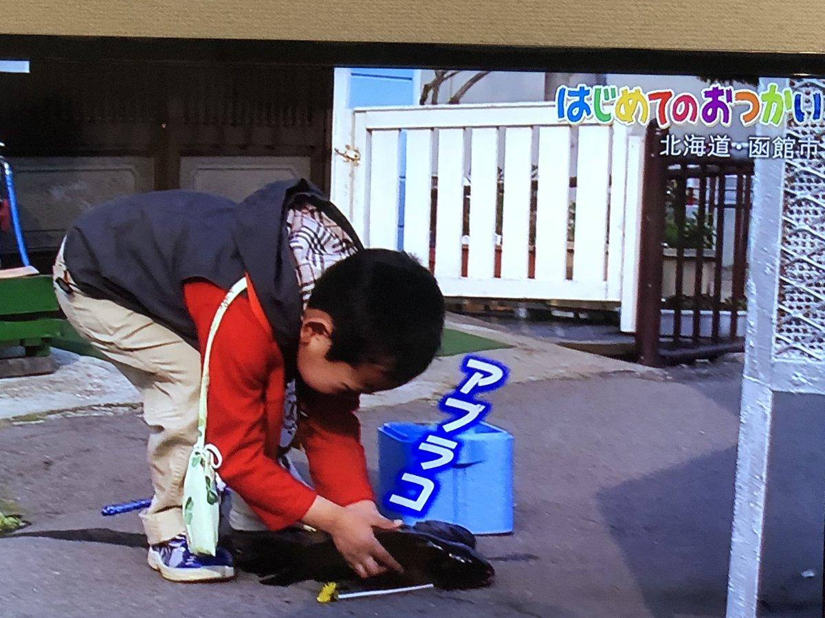 お はじめて つかい の はじめてのおつかい!笑って泣いての大冒険スペシャル 日本テレビ
